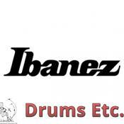 Ibanez Acoustic Guitar Pickguard 5APG28N