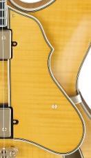 Ibanez Guitar Pickguard 4PG12A0056